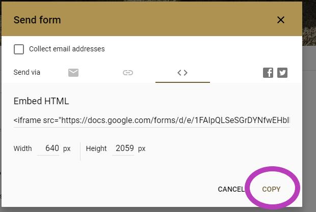 GoogleForms28a